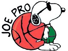 Joe Pro Basketball Beagle